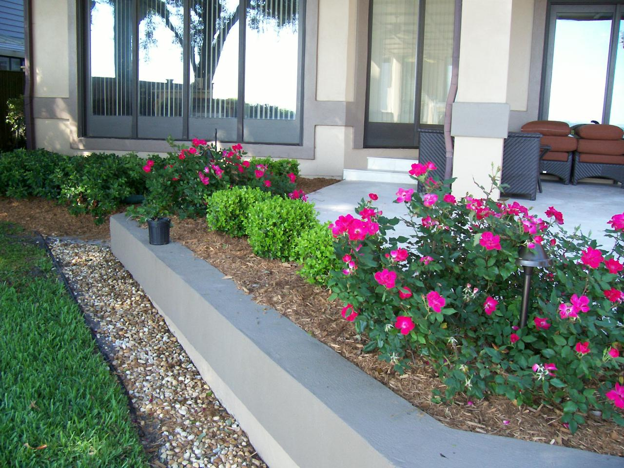 Landscaping With Boxwoods And Roses : Raised planters with boxwoods and knockout roses best