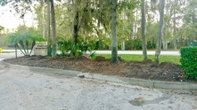 Ponte Vedra Office - Before Landscaping