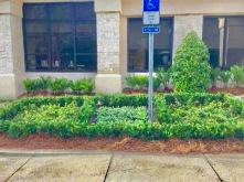 Horizon Landscaping [] 2017 [] Jacksonville, FL