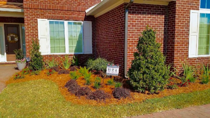horizon-landscaping-of-jacksonville-2