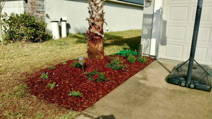 horizon-landscaping-of-jacksonville-4
