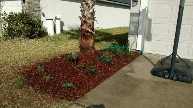 horizon-landscaping-of-jacksonville-6