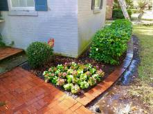 BEGONIAS   Design & Install   Curb Appeal